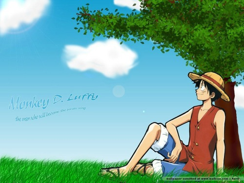 anime_wallpapers_one-piece_1024_12